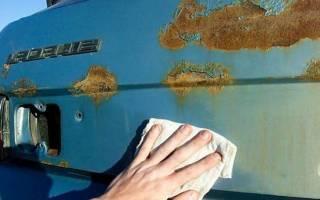 Как избавиться от жучков на кузове автомобиля