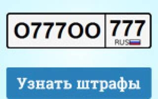 Проверка штрафов по СТС и номеру машины